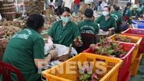 Khai phá thị trường Ấn Độ cho nông sản, thực phẩm chế biến của Việt Nam