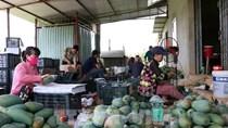 25 năm thiết lập quan hệ ngoại giao Việt Nam - Hoa Kỳ: Hướng tới sự cân bằng
