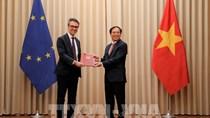 Nghị quyết phê chuẩn Hiệp định EVFTA