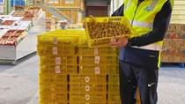 Nhãn tươi Việt Nam được ưa chuộng tại thị trường Australia