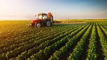 13 điều ít biết về ngành nông nghiệp Mỹ