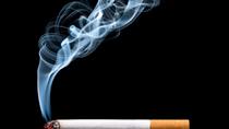 Nhu cầu sử dụng thuốc lá trên phạm vi toàn cầu dự báo giảm
