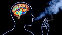 Tác hại của thuốc lá đối với hệ thần kinh con người