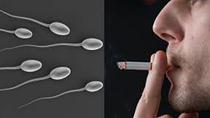 Hút thuốc lá ảnh hưởng đến sức khỏe sinh sản nam giới