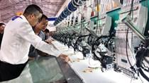 Kỳ vọng sự chuyển mình của công nghiệp hỗ trợ