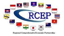 Ngành hàng nào hưởng lợi khi RCEP được thực thi?