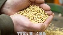 Trung Quốc ký thỏa thuận mua nông sản của Lào