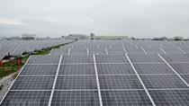 Singapore khánh thành nhà máy điện Mặt Trời nổi lớn nhất thế giới