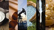 TT hàng hóa quốc tế phiên 9/9: Giá dầu và vàng tăng, cà phê giảm