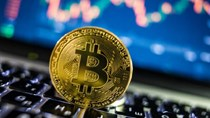 Giá bitcoin hôm nay 11/6 trên 36.000 USD