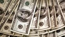 Giải pháp nào khi đồng USD tiếp tục tăng mạnh?