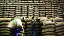 Bangladesh mở thầu mua thêm 50.000 tấn gạo