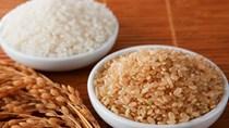 Báo cáo thị trường lúa gạo EU