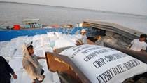 Thị trường xuất khẩu gạo dự báo khởi sắc trong quí 2/2019
