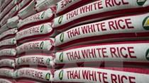 Thái Lan bán 500.000 tấn gạo dự trữ chất lượng kém