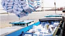 Philippines: Uỷ ban NFA bác đề xuất nhập khẩu gạo