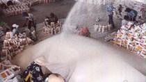 Giá gạo Việt Nam lên cao nhất 2,5 năm, gạo Thái Lan cao nhất gần 1 năm