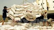 Philippines tìm mua thêm 300.000 tấn gạo
