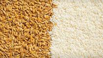 Xuất khẩu gạo Ấn Độ năm 2021 dự báo cao kỷ lục 15,5 triệu tấn