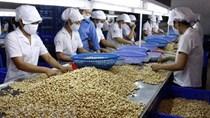 Nông sản xuất khẩu có thể chịu ảnh hưởng từ quy định SPS mới của WTO