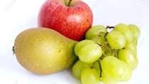 Báo cáo của USDA về triển vọng hạt và trái cây của Mỹ