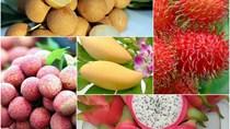 Xuất khẩu nông sản, trái cây Việt Nam: Cơ hội từ các thị trường mới