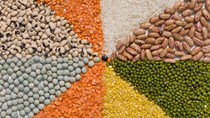 Giá nông sản và kim loại thế giới ngày 04/12/2019