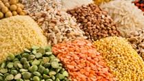 Giá nông sản và kim loại thế giới ngày 18/02/2020