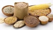 Mỹ La tinh là thị trường tiềm năng cung cấp nguyên liệu phục vụ sản xuất