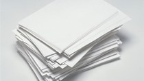Thống kê xuất khẩu giấy toàn cầu