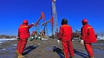 Động lực mới cho thị trường dầu mỏ