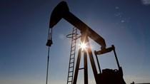Giá dầu giảm trong phiên sáng 5/1/2020