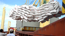 Thống kê nhập khẩu gạo của Trung Quốc
