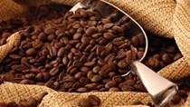Giá cà phê quay đầu giảm do real của Brazil mất giá