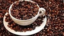 Xuất khẩu cà phê hòa tan tăng nhanh