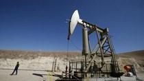 Cần 500 tỷ USD để cứu ngành dầu khí