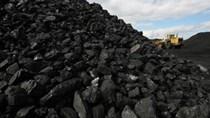 Giá than thế giới thấp nhất 12 năm, triển vọng sẽ còn giảm nữa