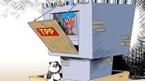 """Forbes: Sai lầm lớn khi """"gạt"""" Trung Quốc khỏi TPP"""
