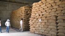 Bác tin đồn bán lúa dự trữ không minh bạch