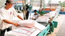 Thị trường tuần qua: Giá gạo xuất khẩu lên cao nhất 9 tháng và dự báo tăng tiếp