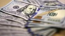 USD tăng khi Fed phát tín hiệu nâng lãi suất vào tháng 9
