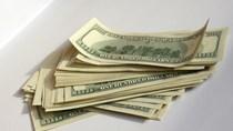 Nhà đầu tư bán tháo USD sau quyết định của Fed
