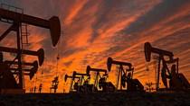 IMF: Tăng trưởng của các nước xuất khẩu dầu sẽ trì trệ nhiều năm do dầu mất giá