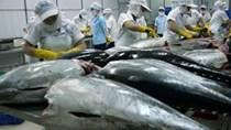 Đề nghị gỡ khó cho cá ngừ Việt xuất khẩu sang Nhật