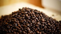 Giá cà phê trong nước ngày 07/7/2017