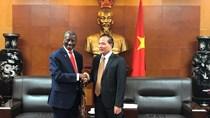 Thứ trưởng Cao Quốc Hưng tiếp Đại sứ Namibia