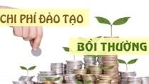 Quyết định của BTC về quy chế đào tạo, bồi dưỡng công chức, viên chức ngành Tài chính