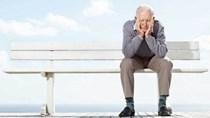 Nghị định của Chính phủ về việc nghỉ hưu trước tuổi với công chức