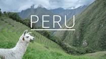 Cơ hội xuất khẩu của doanh nghiệp Việt Nam vào Peru rất lớn