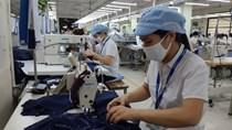 TLĐ Lao động Việt Nam hướng dẫn thực hiện quy chế dân chủ ở cơ sở tại nơi làm việc